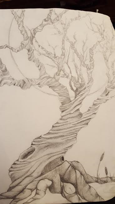 twisted-tree-in-pencil